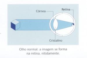 img_folheto-300x201